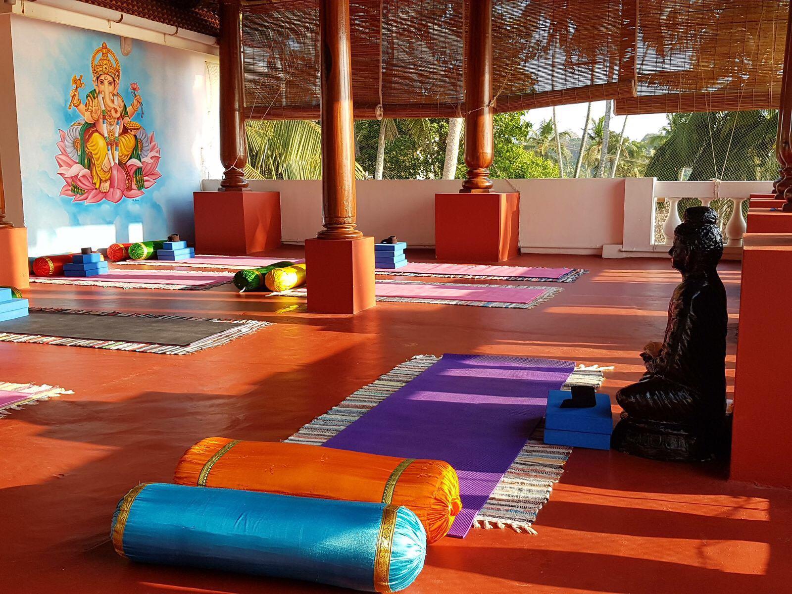 Palm Tree Yoga Kerala, India – Yoga Retreat 2022